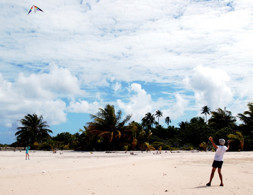 kite on toau